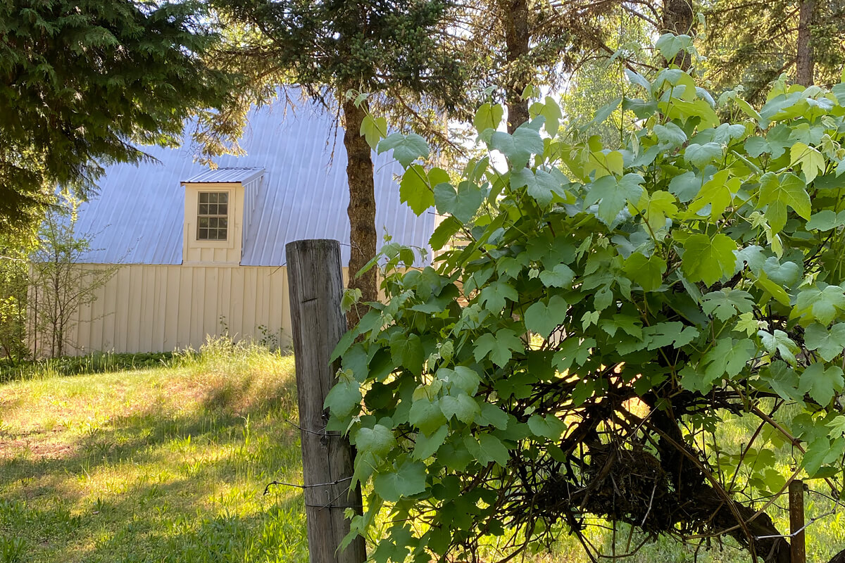 Odell Guesthouse, Hood River, Oregon, USA | vacation homes for rent