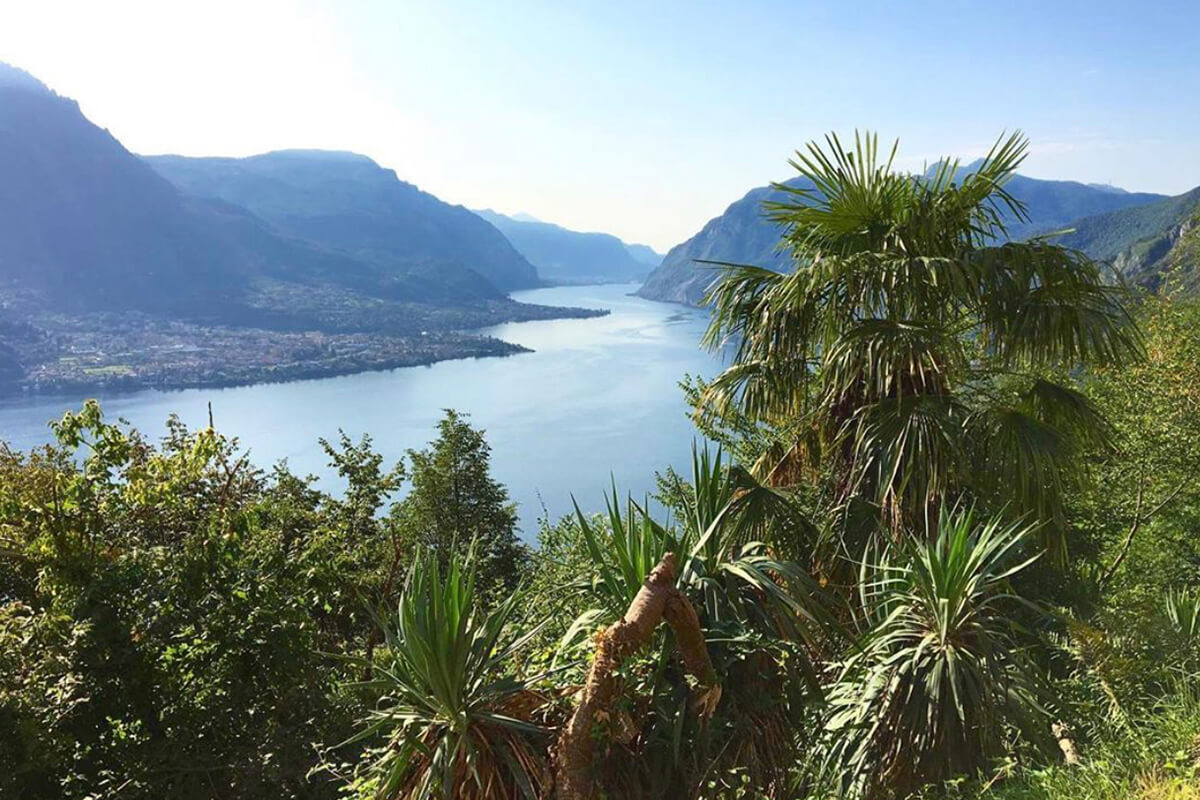 Villa Ponti Bellavista, Lake Como, Italy | villas for rent, villas to rent