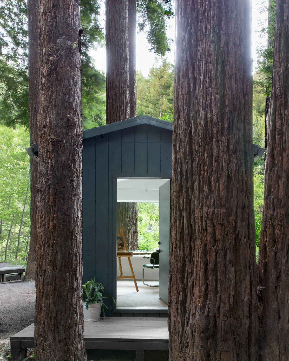 The Caz Cabin, Russian River, California, USA | cabin rentals