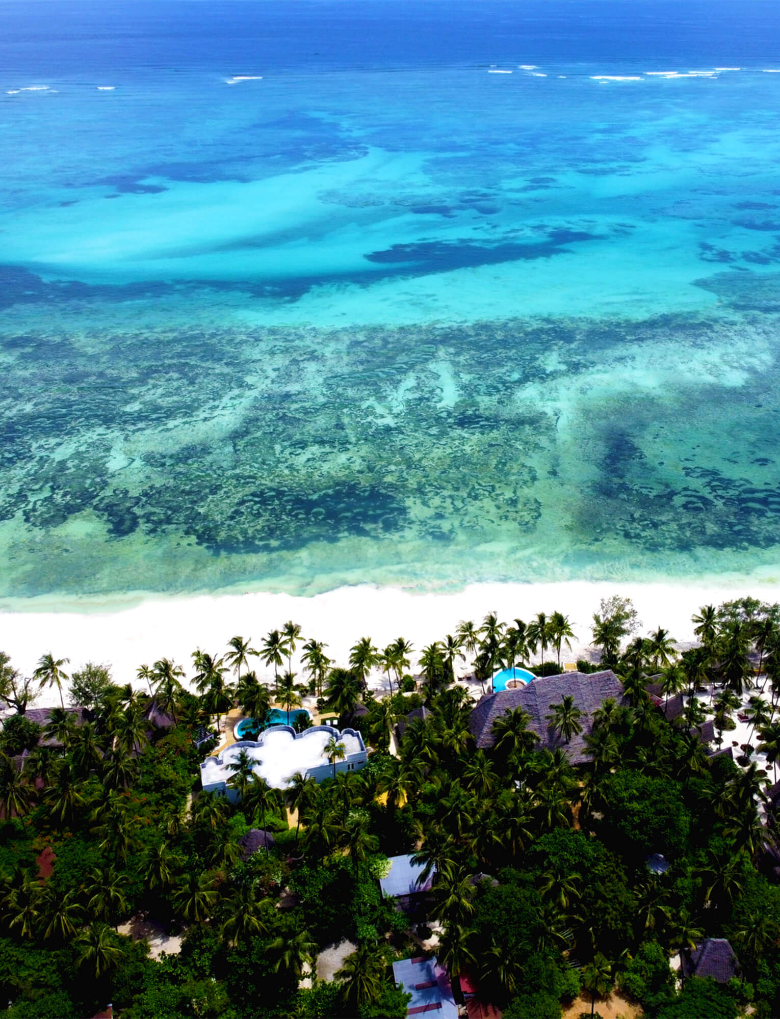 Events at Boutique Hotel Matlai - Michamwi, Zanzibar Central/South, United States | vacation home rentals