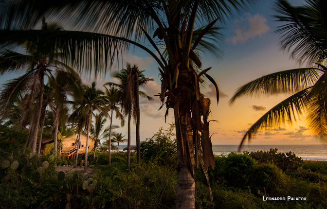 Playa Viva, Juluchuca, Mexico   small luxury hotels, boutique hotels