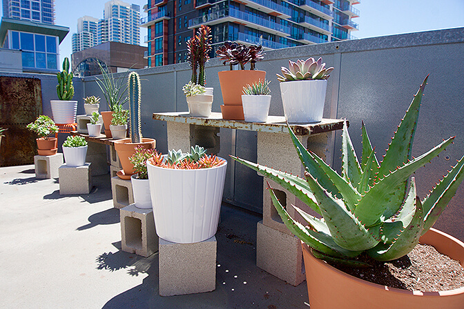 Downtown Penthouse, San Diego, CA   vacation homes for rent